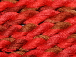 Cotton Ribbon - shade 307