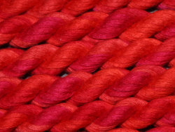 Cotton Ribbon - shade 314