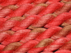 Cotton Ribbon - shade 5307