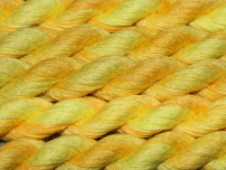 Cotton Ribbon - shade 5321